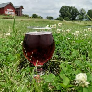 A glass of Briar Patch out in the grass