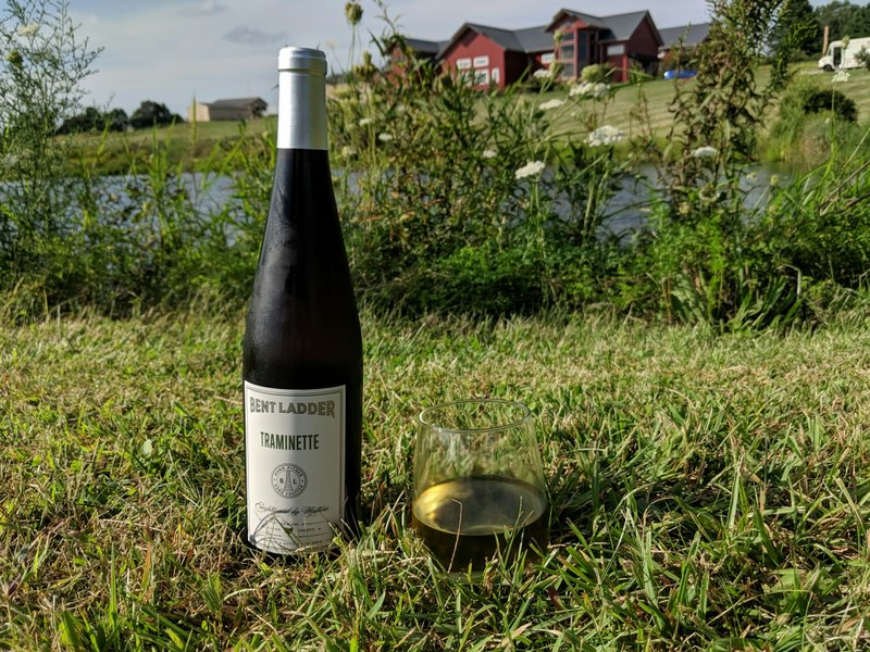 A bottle and glass of Tramineete out by the pond